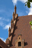 Roof tiles and decorations in Malbork — Stock Photo