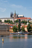 St Vitus Cathedral on the hill — Stock Photo