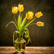 Yellow flowers on rustic background - Stockfoto
