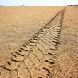 Stock Photo: Car tracks in the sand