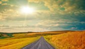 Empty road in the sunset — Stock Photo