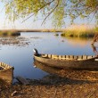 Old boats — Stock Photo #28070713