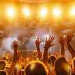 Crowd at concert — Stock Photo #51467025
