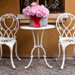 Vintage chair and table with flower in front yard — Stock Photo #43176949