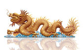 Golden Dragon on white background — Stok fotoğraf