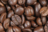 Close-up of some coffee beans - Einige Kaffeebohnen — Stock Photo