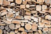 Secções transversais dos logs — Foto Stock