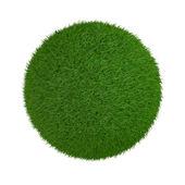 Sphère de l'herbe — Photo