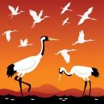 ensemble d'oiseaux - grues — Vecteur