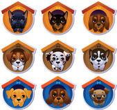 Dog stickers set — Stock Vector
