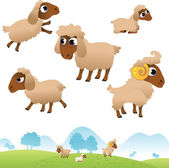 Landscape and set of sheep and Lambs — Stock Vector