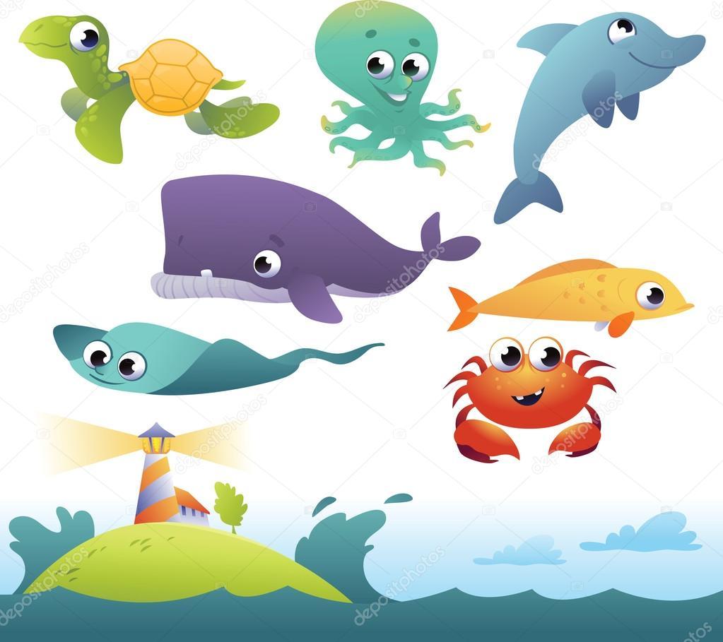 海洋动物的一套