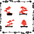 Collection of chinensi bonsai silhouettes - Stock Vector