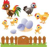 Set of vector chicken and hen. — Stock Vector