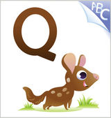 Animal alphabet for the kids: Q for the Quoll — Stock Vector