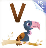 Animal alphabet for the kids: V for the Vulture — Stockvektor
