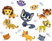 Collection of Wild Cats — Stock Vector