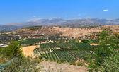 Amazing landscape of Crete island. — Stock Photo