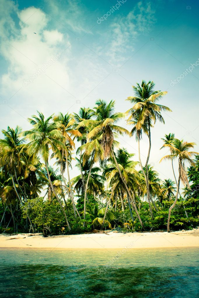 Tropical island with palm trees — Stock Photo #12489115
