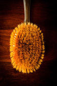 Hairbrush on wood — Stock Photo