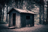 Spooky kabin — Stok fotoğraf