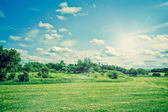 Countryside field landscape with grass and bushes — Foto Stock