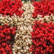 Denmark flag made out of flowers — Stock Photo #51416681