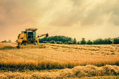 Harvester machine on a field — Stock fotografie
