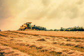 Harvester on a dry field — Stock Photo