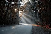 Doğru yol için bir şafak — Stok fotoğraf