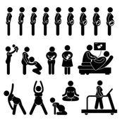 Grossesse enceinte étapes processus développement prénatal mère bébé exercice stick figure pictogramme icône — Vecteur