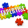 Stock Photo: Expertise