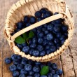 Blueberries in wooden basket — Stock Photo #15704693