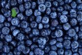 Blueberries with little green leaf — Stock Photo