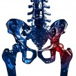 Skeleton 3D hip pain concept — Stock Photo