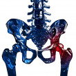 Skeleton 3D hip pain concept — Stock Photo #26954549