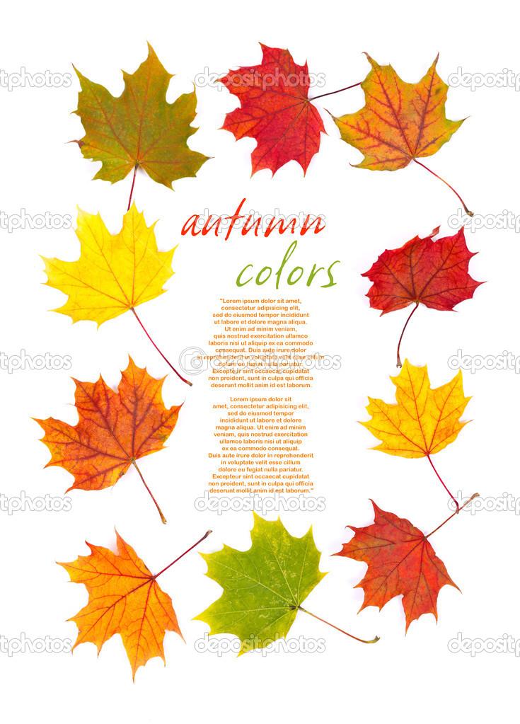 多彩的秋天的树叶边框 — 图库照片08kalozzolak