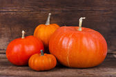 Pumpkin family — Stock Photo