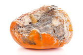 Rotted pumpkin — Stock Photo