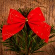 Closeup view of tree branch with red bow — Stock Photo
