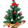 Small christmas tree — Stock Photo