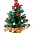 Small christmas tree — Stock Photo #36049605