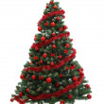 Christmas tree — Stock Photo #4421373