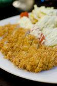 Japanese breaded deep fried pork cutlet — Stock Photo