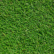 Royalty-Free Stock Photo: Fresh green grass background texture