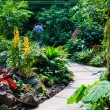 Walkway Path through the Garden — Stockfoto