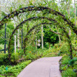 loopbrug pad door de tuin — Stockfoto