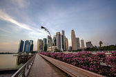 Walkpath with Singapore city building background — Stock Photo
