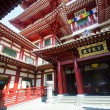 BuddhTooth Relic Temple in ChinTown , Singapore — Stock Photo #27981695