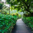 Stock Photo: Walk way Path Through Garden
